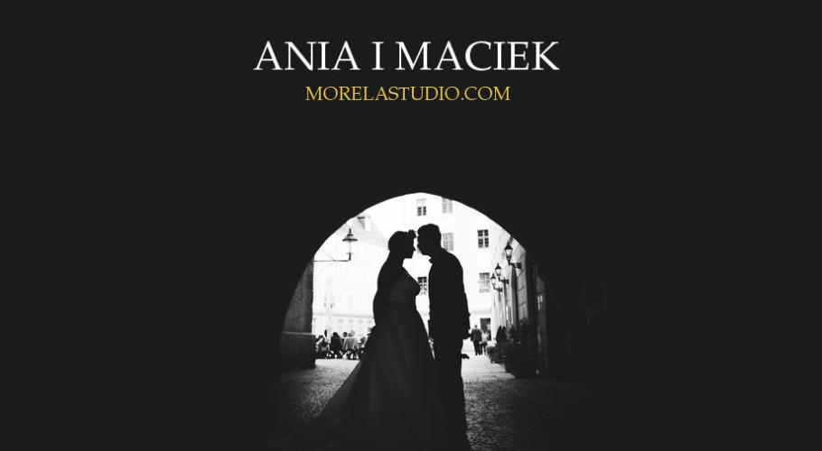 Ania i Maciek |  Leniwka