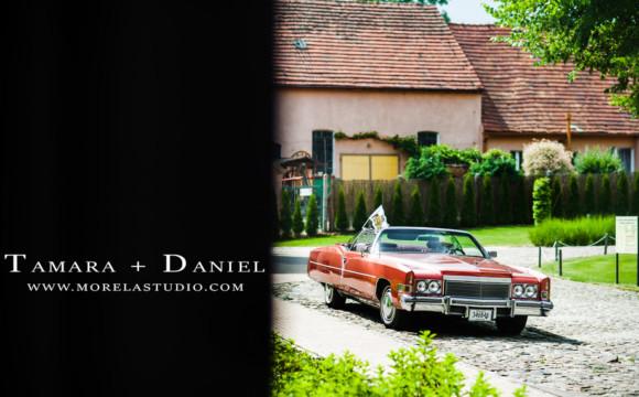 Tamara + Daniel | Ślub Dwór Kolesin