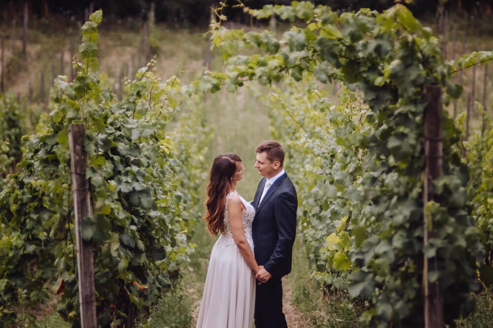 winnica plenerowa sesja ślubna